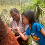 Tess Atie showing Megan how to collect termite mound